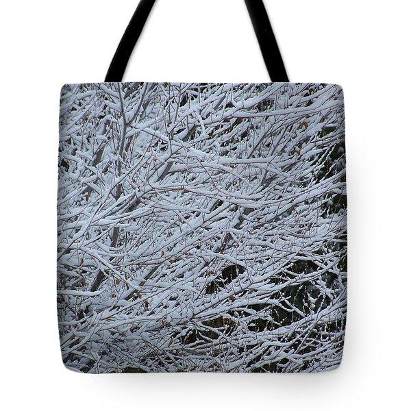 Winter At Dusk Tote Bag