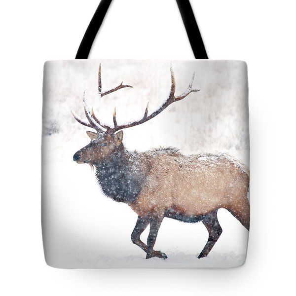 Tote Bag featuring the photograph Winter Bull by Mike Dawson