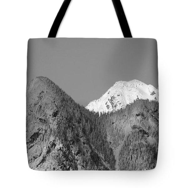 Winter Delight Tote Bag