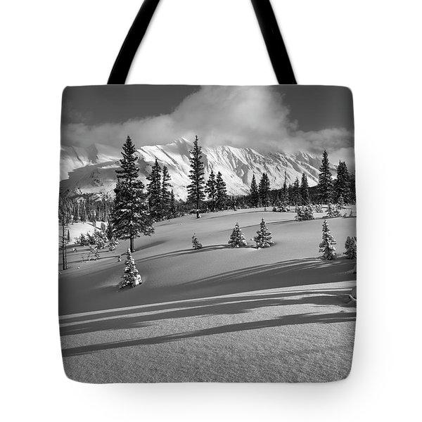 Winter In Banff Tote Bag