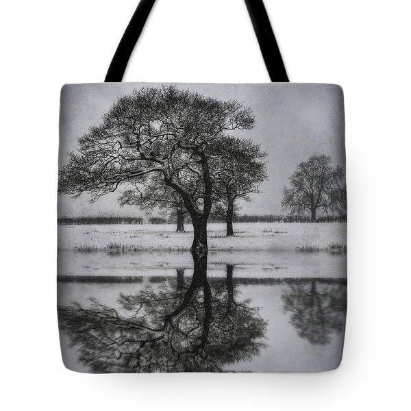 Winter Lake Tote Bag by Ian Mitchell