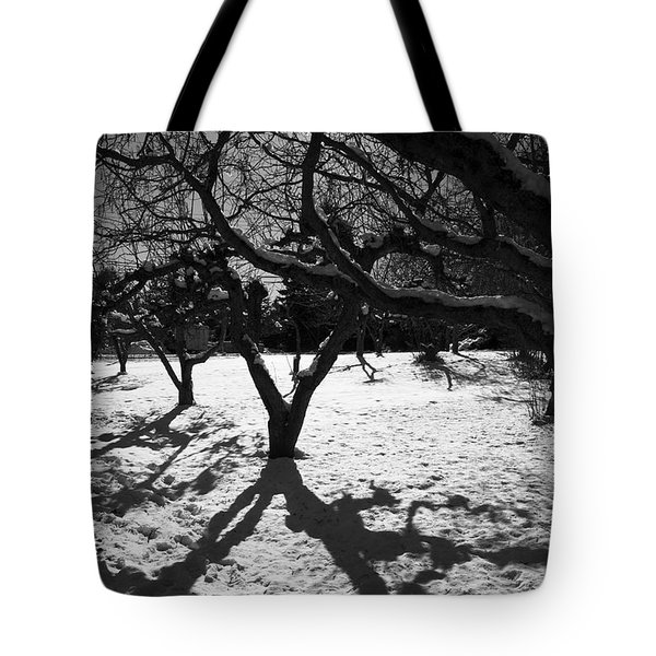 Tote Bag featuring the photograph Winter Shadows by Yulia Kazansky