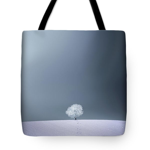 Tote Bag featuring the photograph Winter Tree by Bess Hamiti