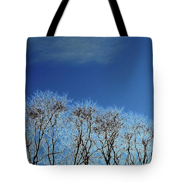 Winter Trees And Sky 3  Tote Bag