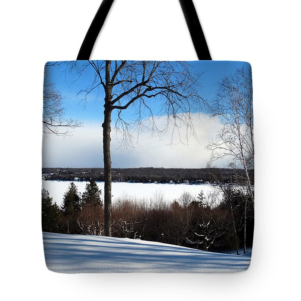 Tote Bag featuring the photograph Winter View Of Sister Bay by David T Wilkinson