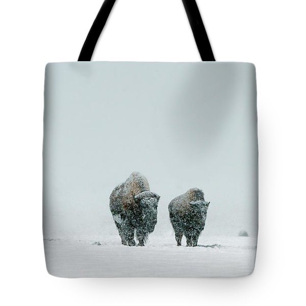 Tote Bag featuring the photograph Winter's Burden II by Sandra Bronstein