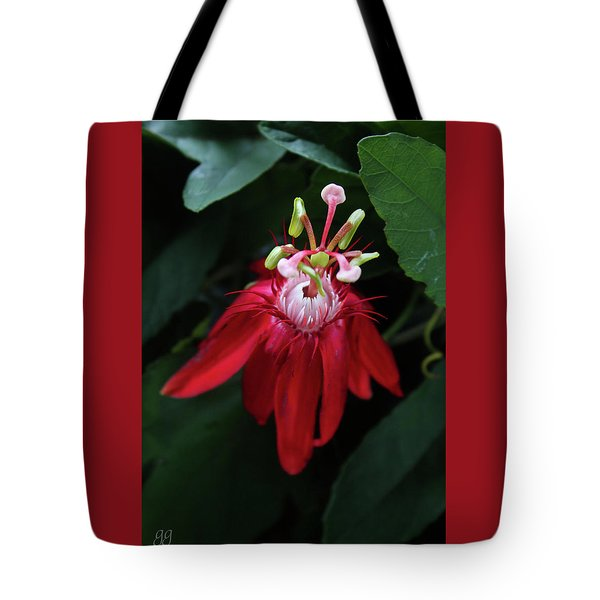 With Passion Tote Bag