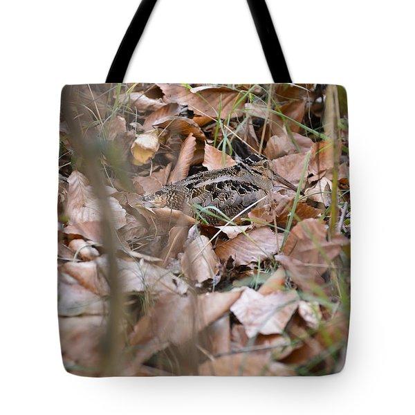 Timberdoodle 2 Tote Bag