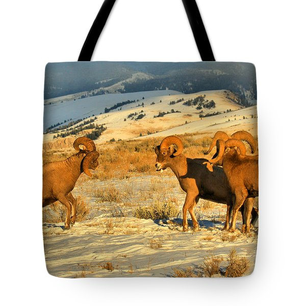 Grand Teton Bighorn Brawlers Crop Tote Bag