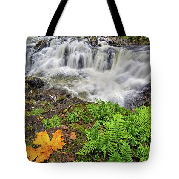 Yacolt Falls In Autumn Tote Bag by David Gn