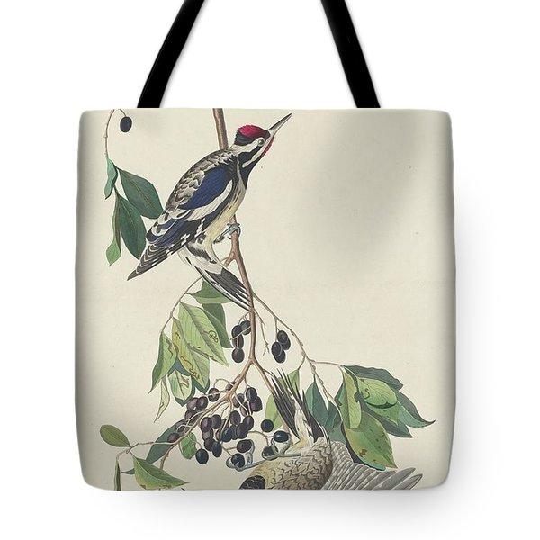 Yellow-bellied Woodpecker Tote Bag by John James Audubon