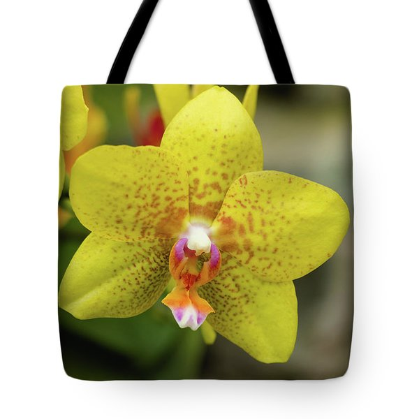 Tote Bag featuring the photograph Yellow Orchid by Cristina Stefan