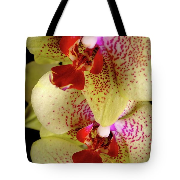 Tote Bag featuring the photograph Yellow Orchid by Dariusz Gudowicz