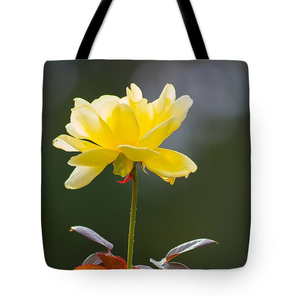 Yellow Rose Tote Bag
