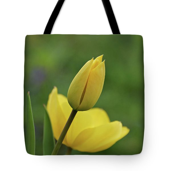 Tote Bag featuring the photograph Yellow Tulips by Sandy Keeton