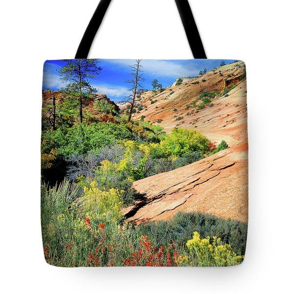 Zion Slickrock Tote Bag