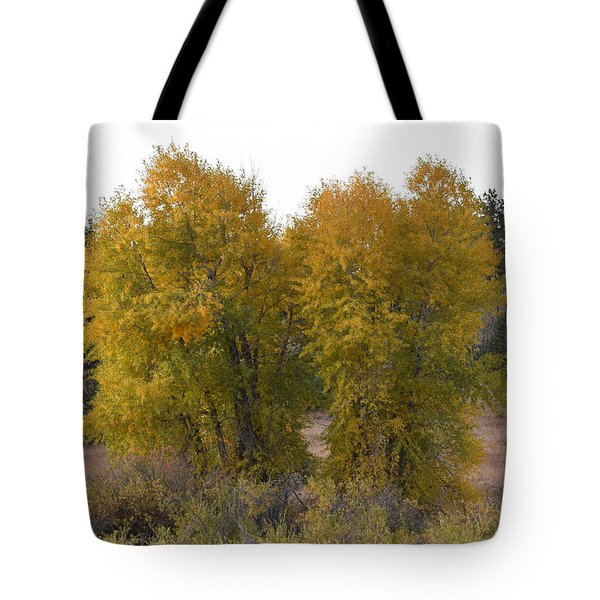 Aspen Trees In The Fall Co Tote Bag