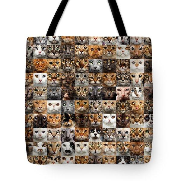 100 Cat Faces Tote Bag