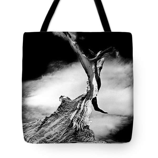 1000 Years To Create Tote Bag by Paul W Faust -  Impressions of Light