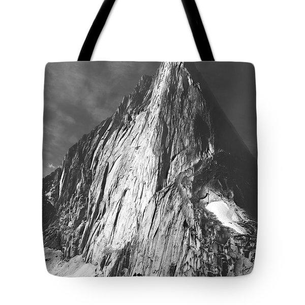 102756 Bugaboo Spire Tote Bag