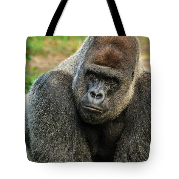 10898 Gorilla Tote Bag by Pamela Williams