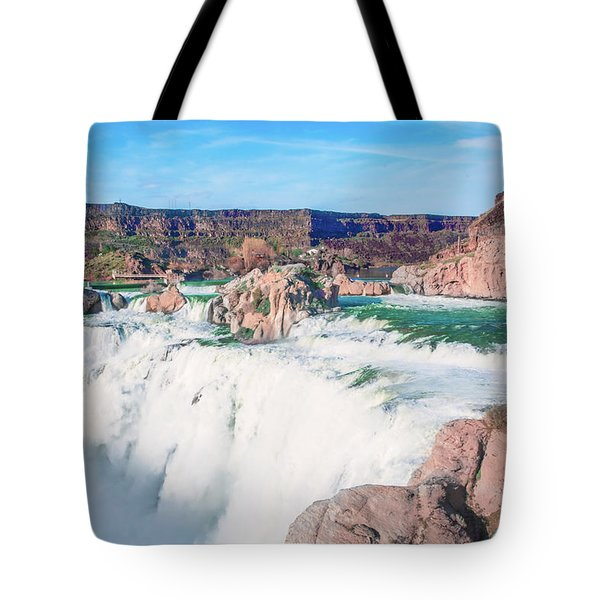 10917 Shoshone Falls Tote Bag by Pamela Williams