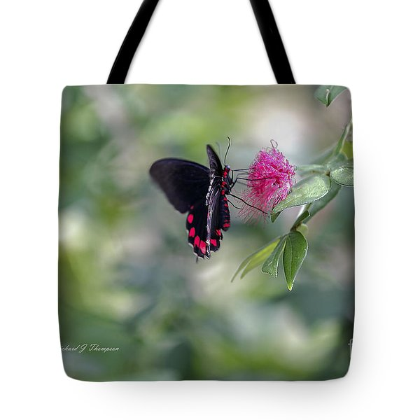 Tote Bag featuring the photograph Butterfly by Richard J Thompson