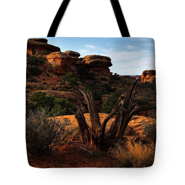 Canyonlands National Park Utah Tote Bag