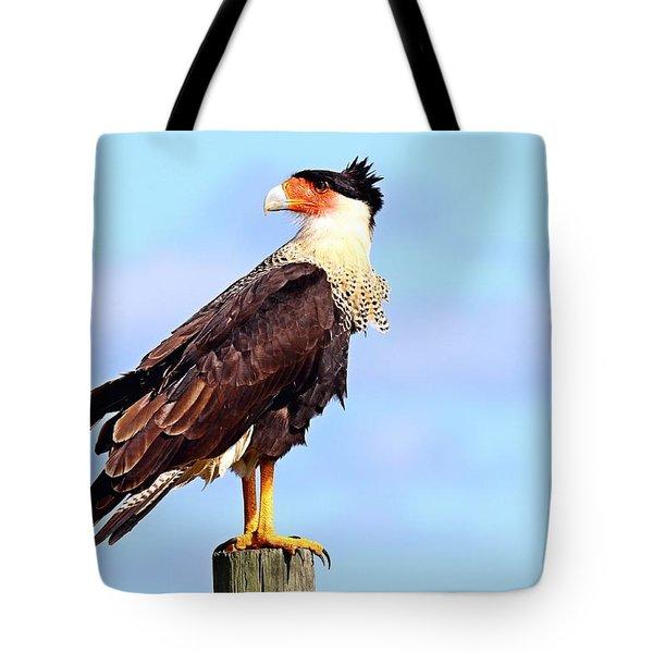 Crested Caracara Tote Bag