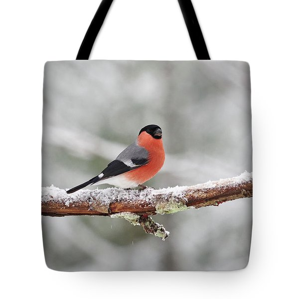 Eurasian Bullfinch Tote Bag