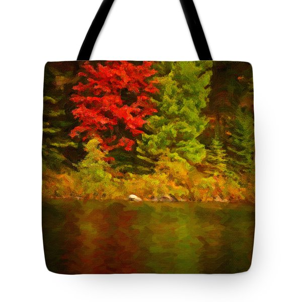 Fall Reflections Tote Bag by Andre Faubert