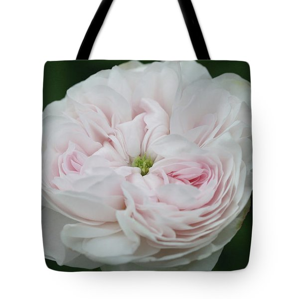 Untitled Tote Bag by Paul Drewry