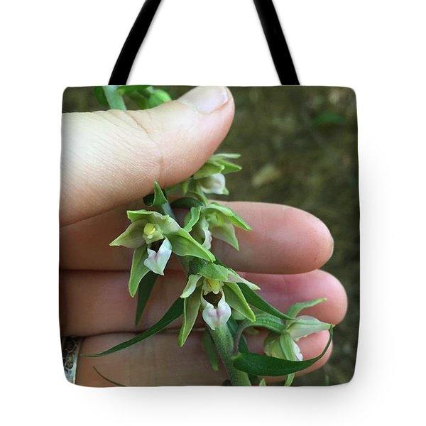 Helleborine  Tote Bag