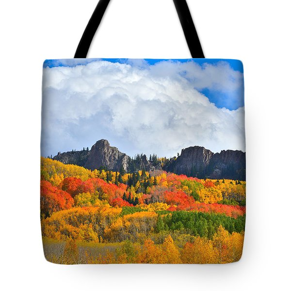 Kebler Pass Fall Colors Tote Bag