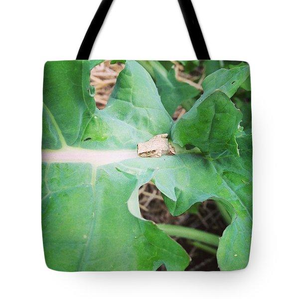 Peeper In The Kale Tote Bag
