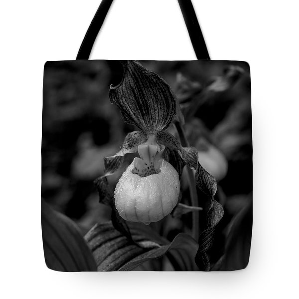 Black And White Flower  Tote Bag by Kevin Blackburn