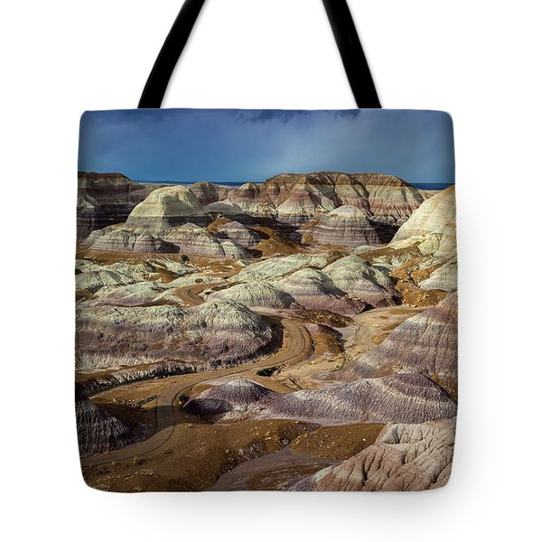 The Petrified Forest National Park Tote Bag