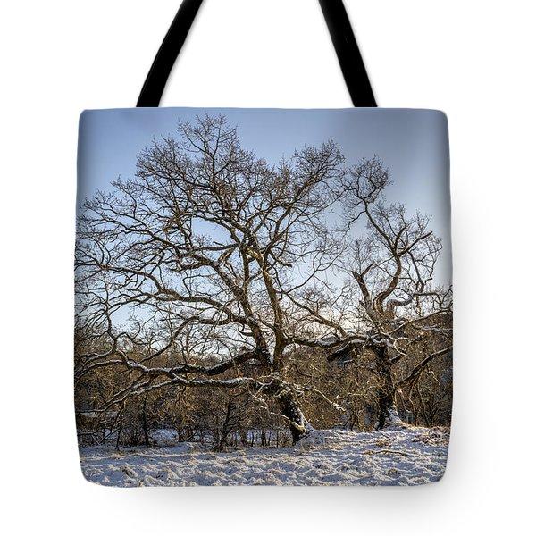 Trossachs Scenery In Scotland Tote Bag