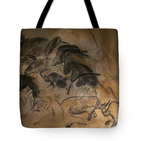 150501p084 Tote Bag