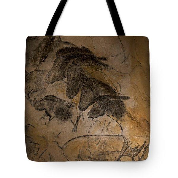 150501p086 Tote Bag
