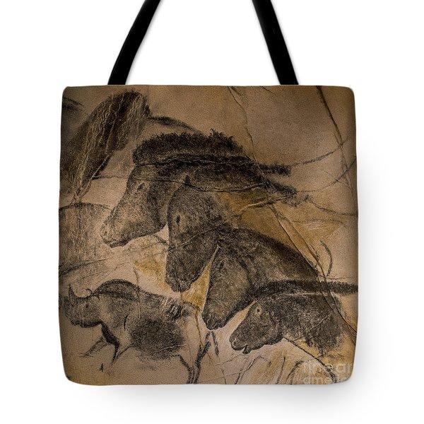 150501p087 Tote Bag