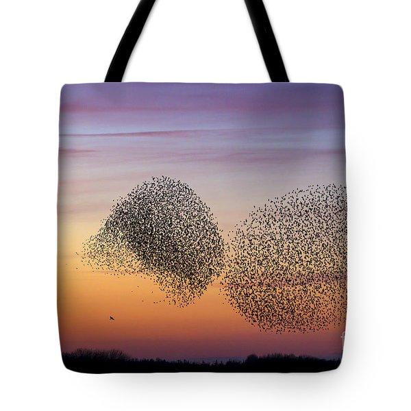 150501p254 Tote Bag