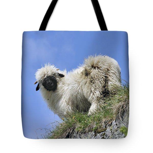 150827p302 Tote Bag