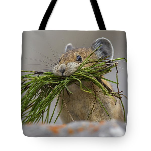 Pika With A Mouthful  Tote Bag