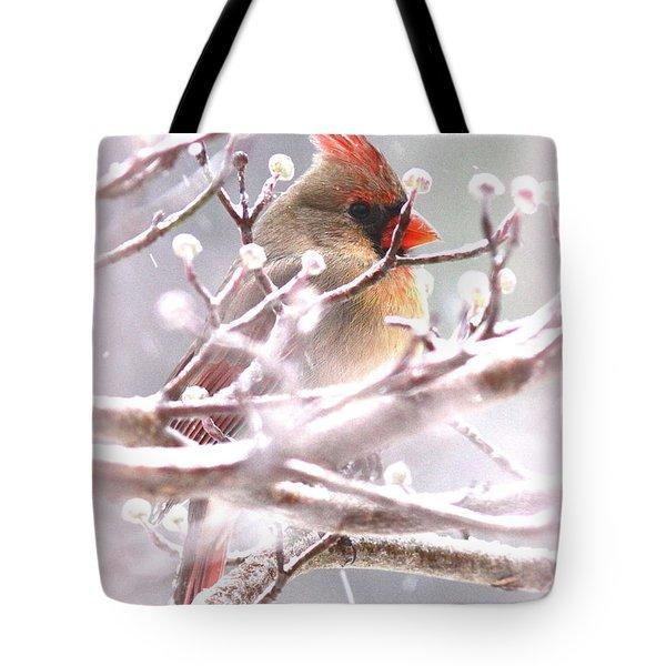 1554-003 Cardinal Tote Bag