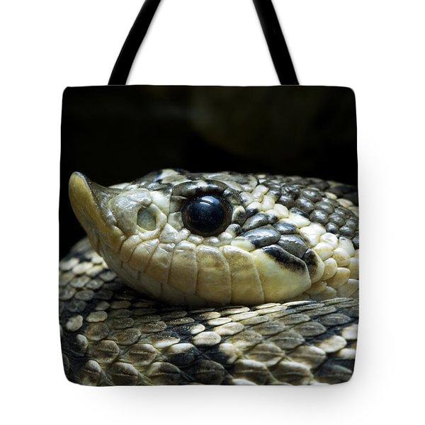 160115p141 Tote Bag