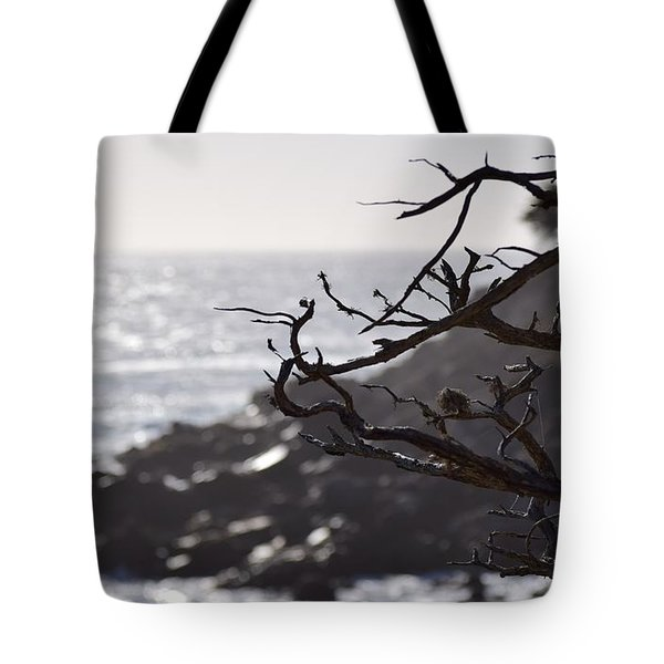 17 Mile Drive  Tote Bag
