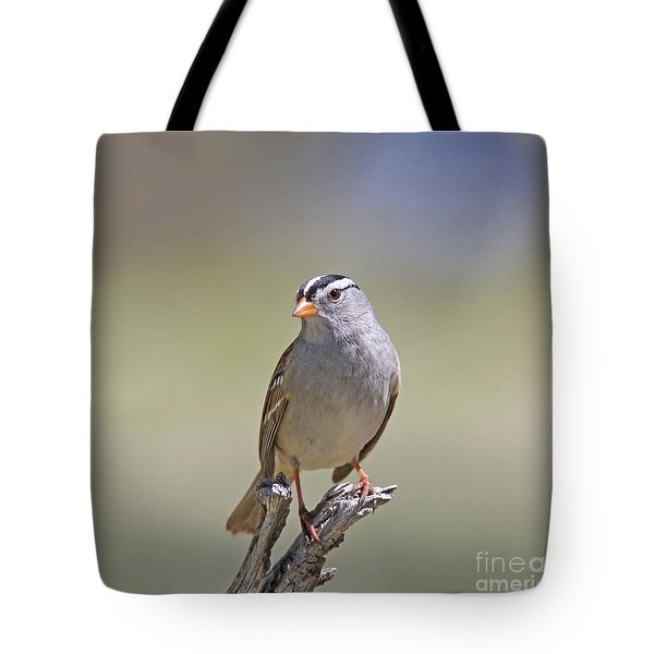 White-crowned Sparrow Tote Bag