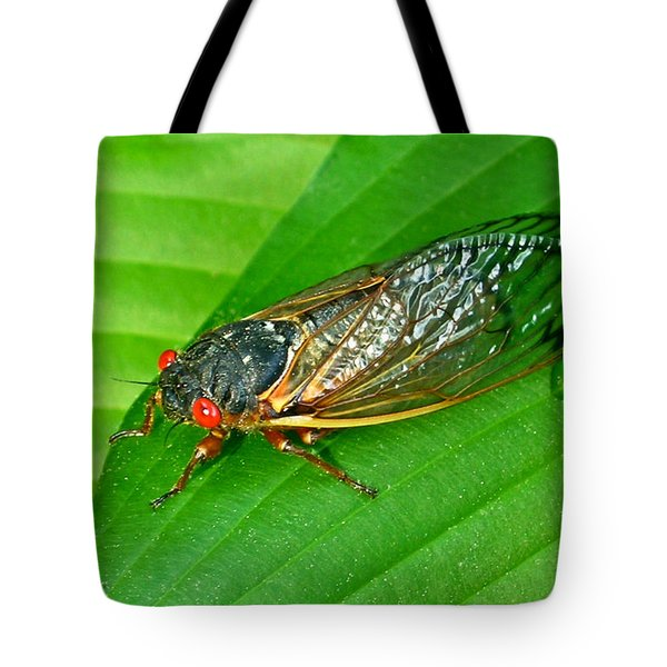 17 Year Periodical Cicada Tote Bag by Douglas Barnett