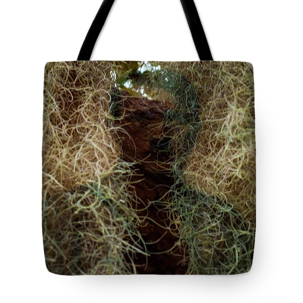 Tote Bag featuring the photograph 18-1 by Randy Sylvia